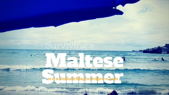 Tips to Surviving a Maltese (or hot!) Summer
